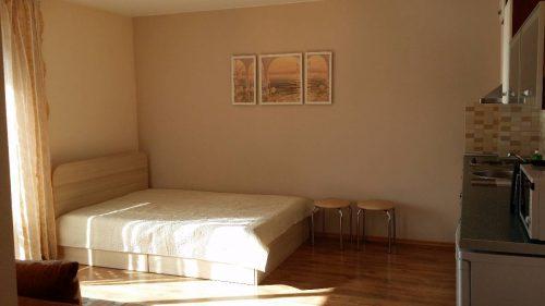 Šviesus ir jaukus vieno kambario butas Palangoje